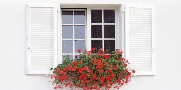 Reti protettive per finestre